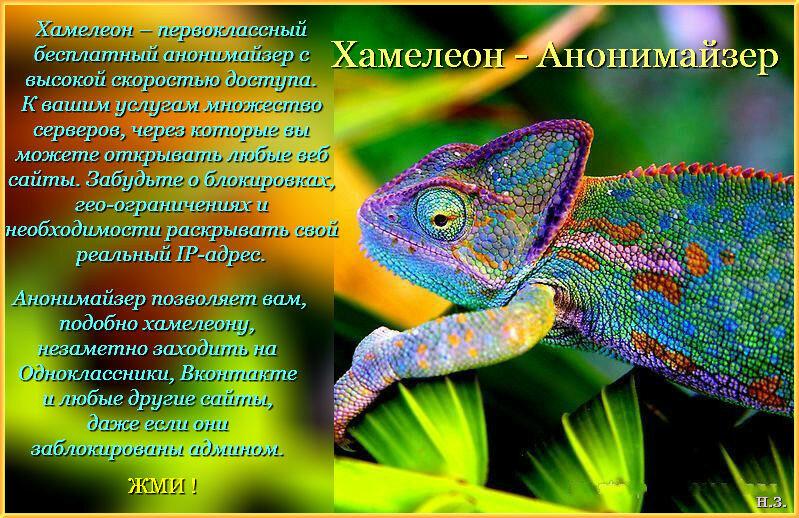 Хамелеон - Анонимайзер.jpg