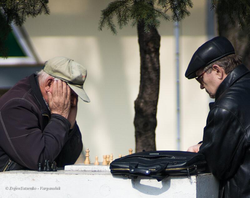Шахматисты в парке Шевченка