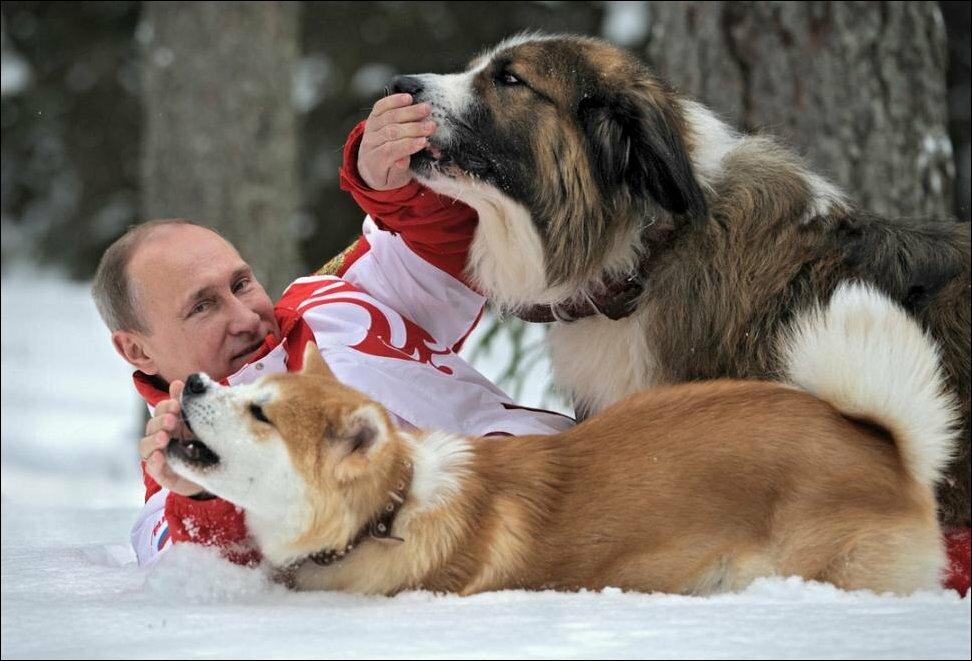 Путин и его собаки Баффи и Юмэ