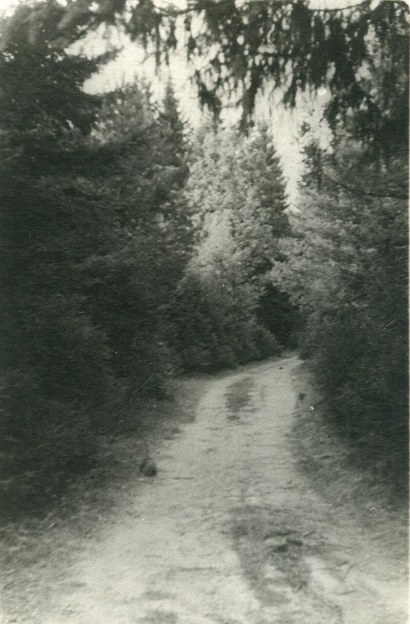 1940 г. Лето, парк