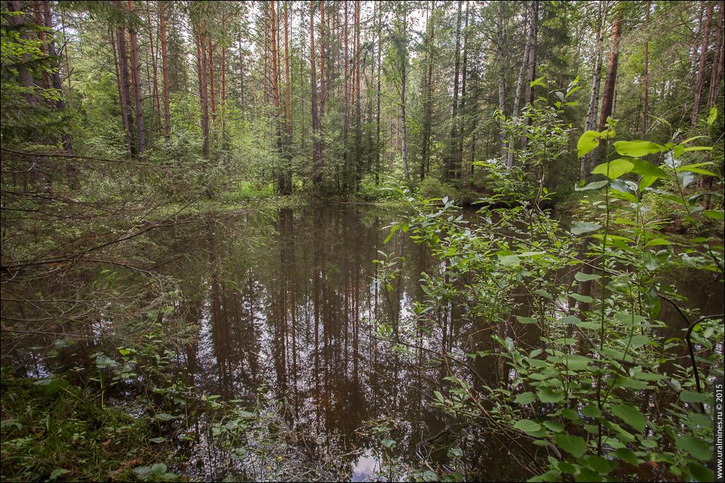 Киселевско-Мокропольский железный рудник Билимбай