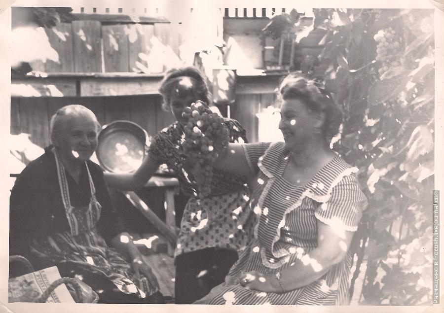 Астрахань фотография 1965 года В собственном винограднике у Долгополовых