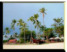 Малайзия. Лангкави. The Frangipani Langkawi Resort & Spa. Frangipani-Boat