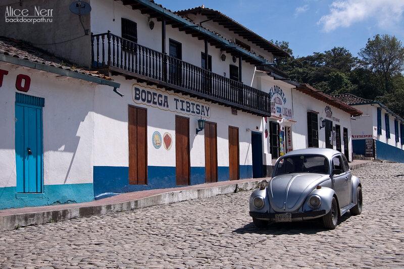 улочка и жук, горный север венесуэлы