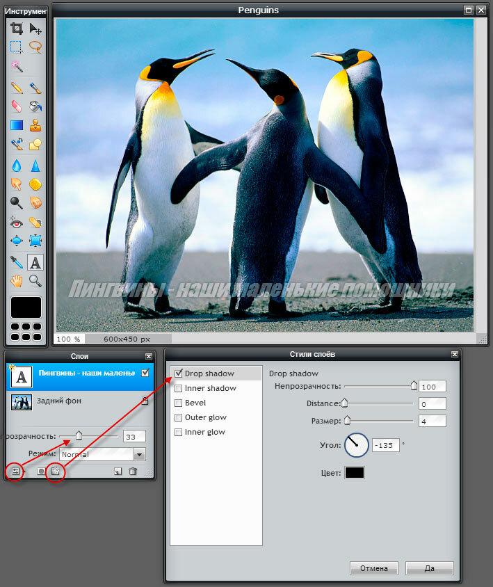 Как сделать надпись на фото или в картинке 29