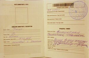 Grisha leikin lumoissa 13.12.2013 - Страница 2 0_be74a_5effc245_M.jpg