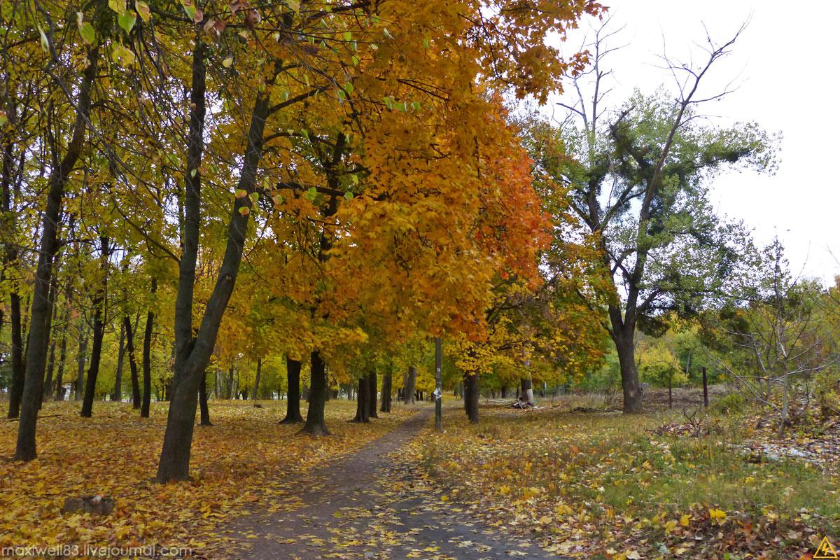 Парк ім. Т.Шевченко в Боярці