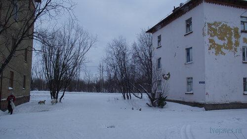 Фото города Инта №2730  Гагарина 1 и Геологическая 5 31.01.2013_13:10