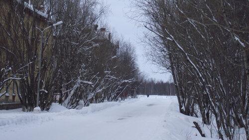 Фотография Инты №2881  Геологическая 3 и 5 31.01.2013_13:41