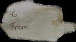 MRD_SnowyDreams-paper-torn2.png