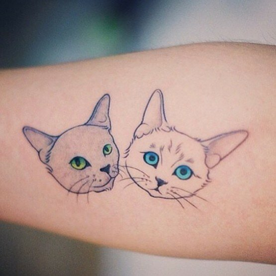 коты-татуировки17.jpg