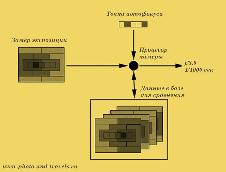 Рисунок 2. Схема работы системы замера экспозиции в цифровом фотоаппарате. Бесплатные уроки фотографии для новичков. Как фотографировать против света и зачем нужна поправка экспозиции.