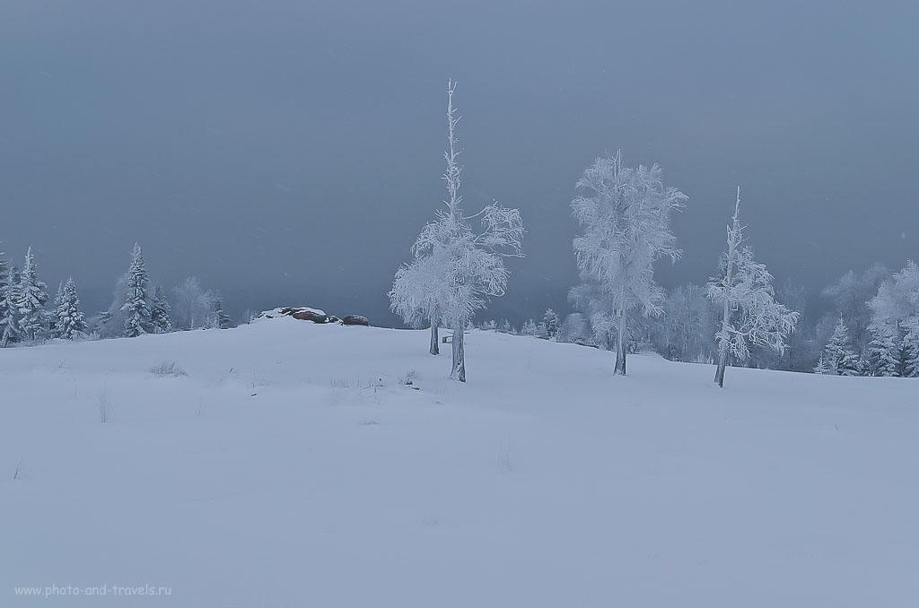 Фото 7. Когда в кадре много снега, автоматика фотоаппарата ошибается в выборе правильной экспозиции, ей нужно помочь. 1/125, 8.0, 100, 31.