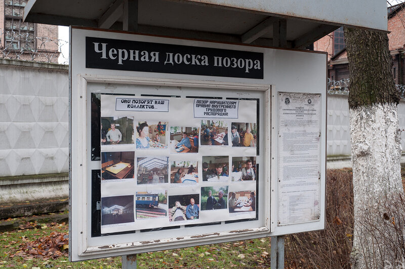 КИУ определил самых результативных за последний год министров: Зубко, Климкин, Нищук, Гриневич и Полторак - Цензор.НЕТ 2892