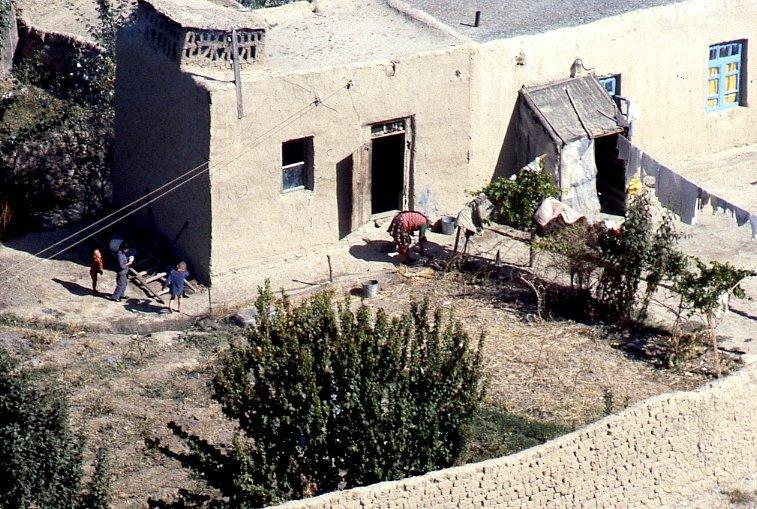 На заднем дворике Ташкента