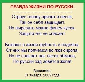стихи, жопа