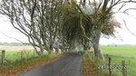 buku tuneles north ireland 28.10.2012
