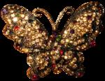 feli_l_gem butterfly.png