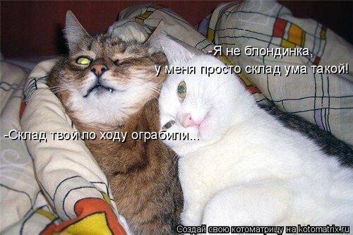 http://img-fotki.yandex.ru/get/4118/194408087.1/0_8dedd_9ed03784_L.jpg