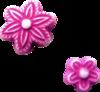 Скрап-набор Crazy Pink 0_b8c49_dd819a1a_XS