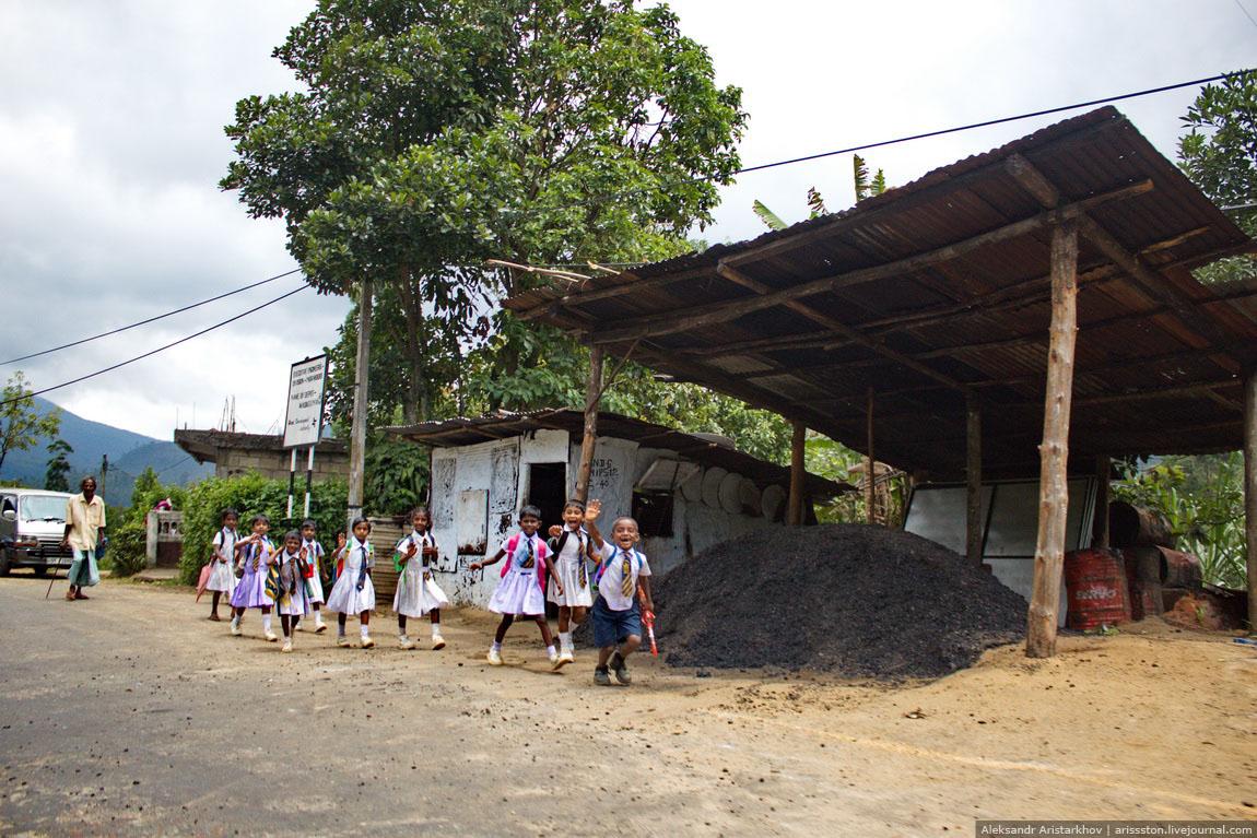 Шри-Ланка_Чайный замок_01