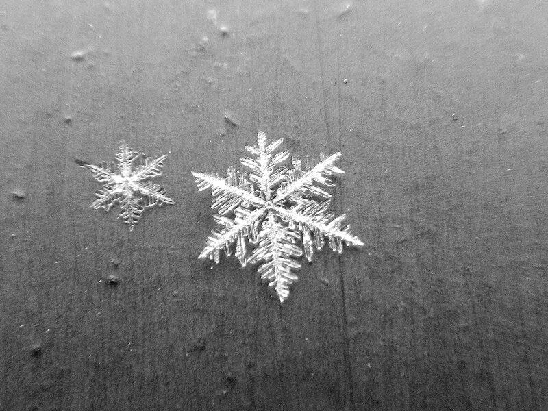 снежинка DSCN1264.jpg