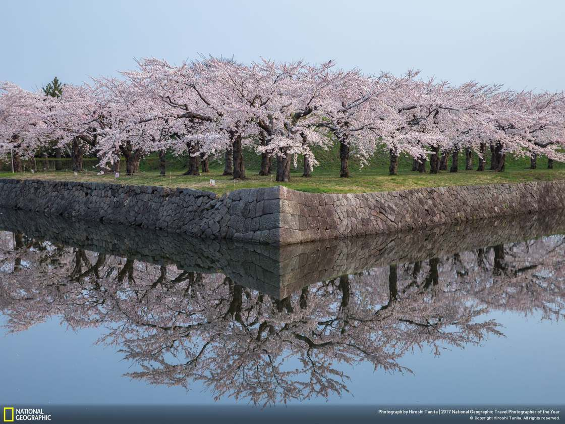 © Hiroshi Tanita