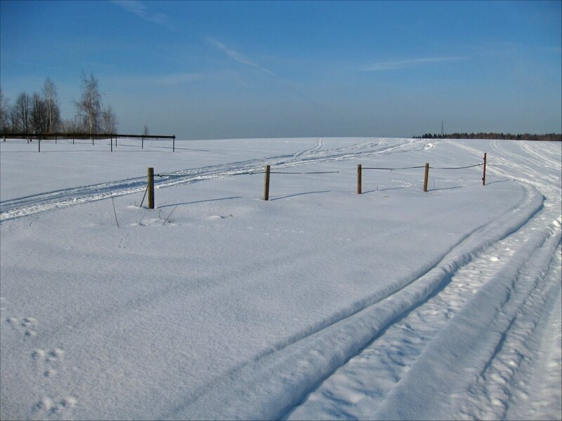 Заборы в поле