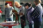 выставка Челябинск 5,6 янв 2013, Петропавловск 7,8 янв 2013г