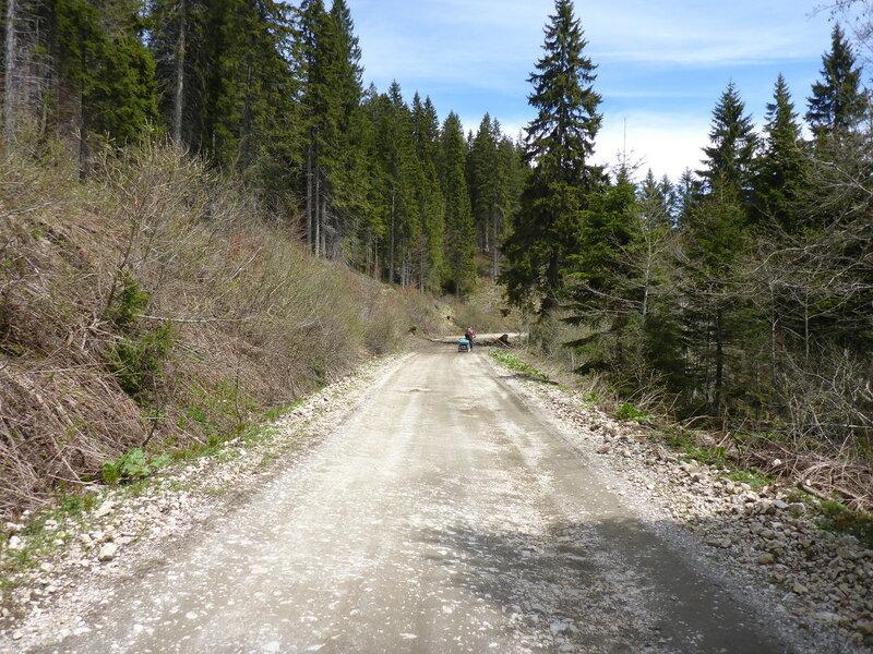грунтовая дорога 198 из парка голия (голиjа) в иваньицу
