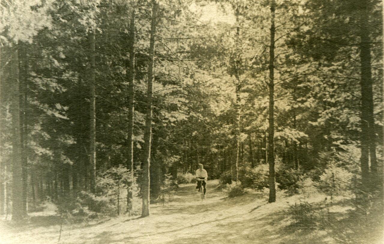 1940 г. Парк