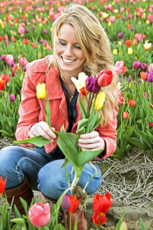 Beautiful dutch woman in the tulip fields