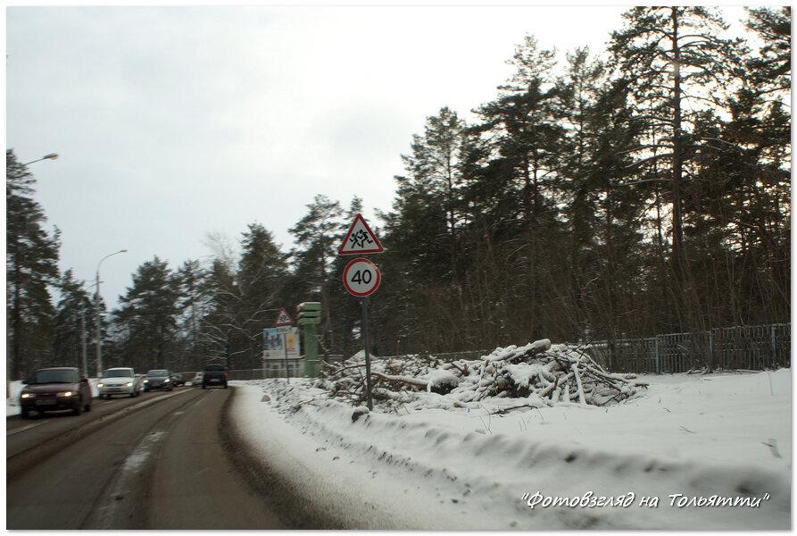 В зеленой зоне Тольятти рубят лес