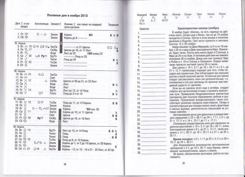Мария Тун Результаты Исследования Констелляций