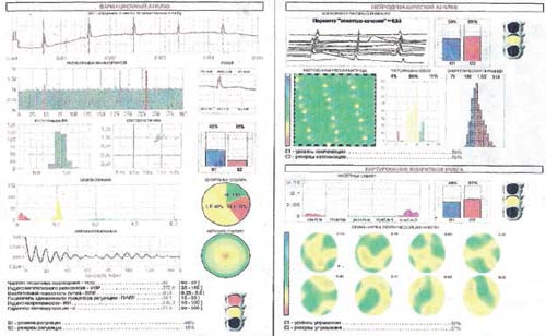 динамика изменения энергетической насыщенности клеток