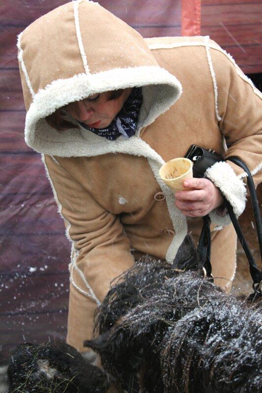 Посетитель угощает зверей кормом