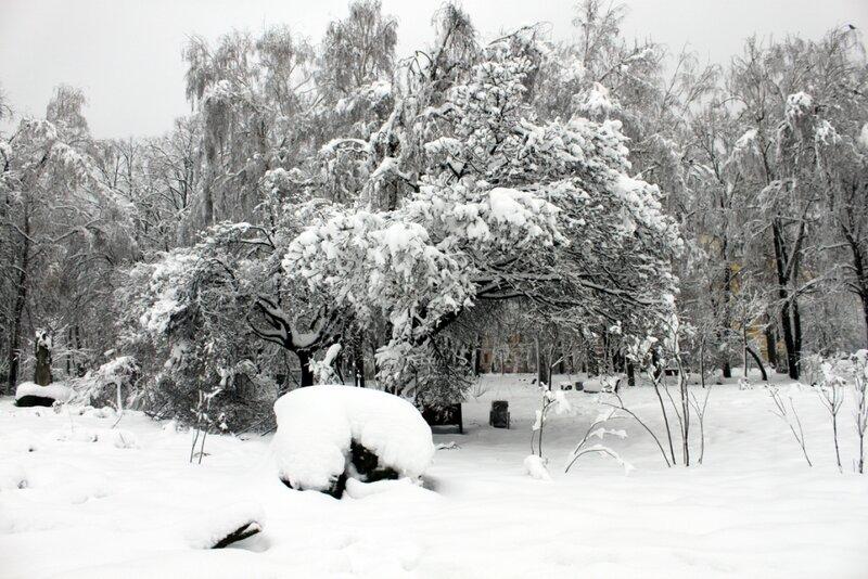 Снег на Владимирской горке