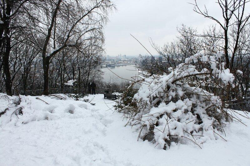 Обзорная площадка Хрещатого парка зимой
