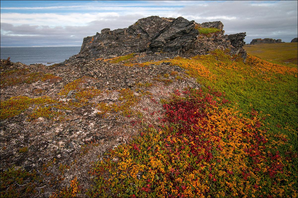 ковалевский отметил, остров кольского полуострова гранитный фото чисто спайперская