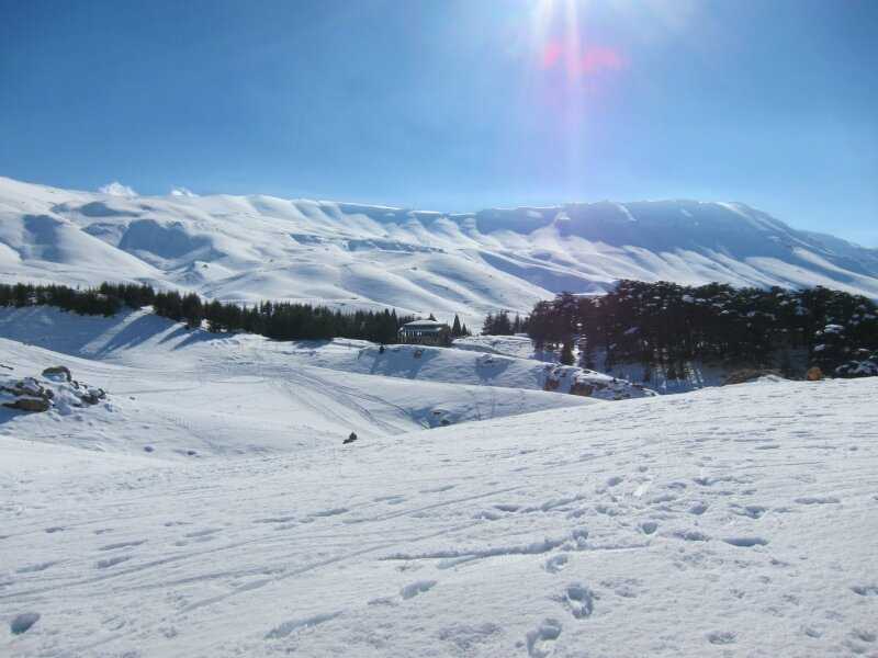 Новогодние каникулы в Ливане (январь 2013)
