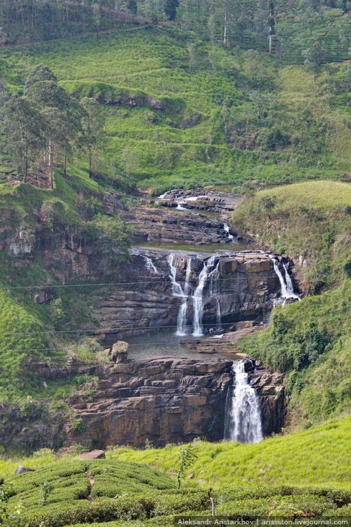 Шри-Ланка_Чайный замок_33