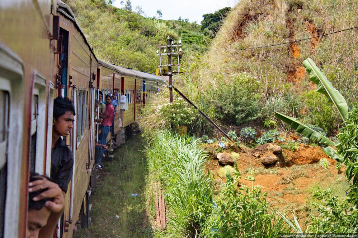Шри-Ланка_Как угнать поезд_06