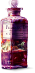 TurningLeafApothecary_LorieD_el (136).png