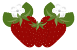 DBA STRAWBERRY WITH FLOWER 2.png