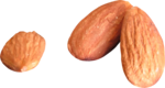 ldw_scc_addon-almonds.png