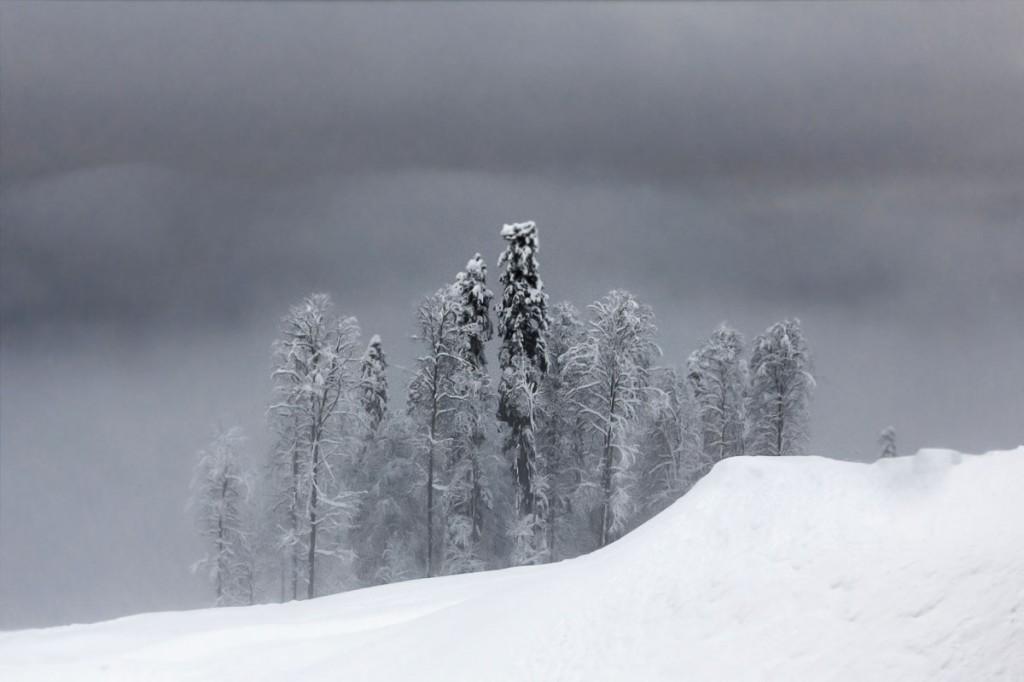 Effektnye-kadry-Krasnoj-polyany-Fotograf-Dmitrij-Kupracevich-8-foto