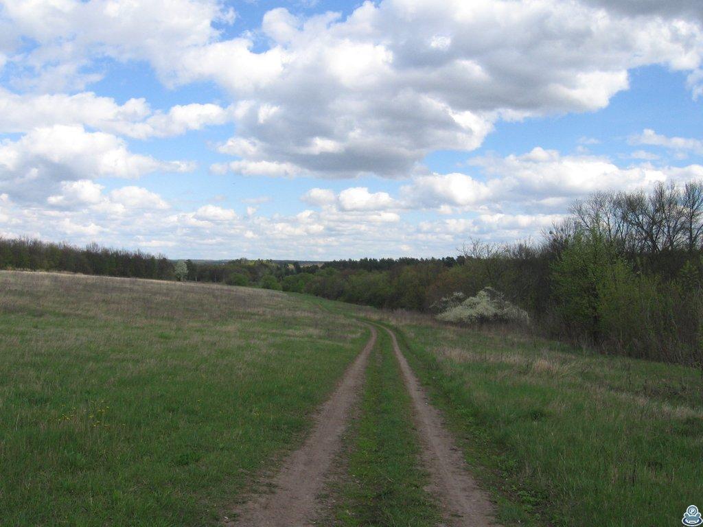 Дорога за селом