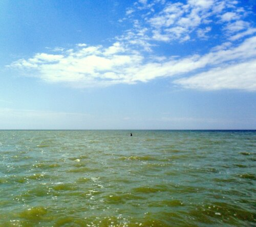 На море в июле