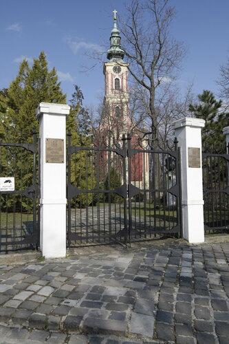 Belgrad cathedral