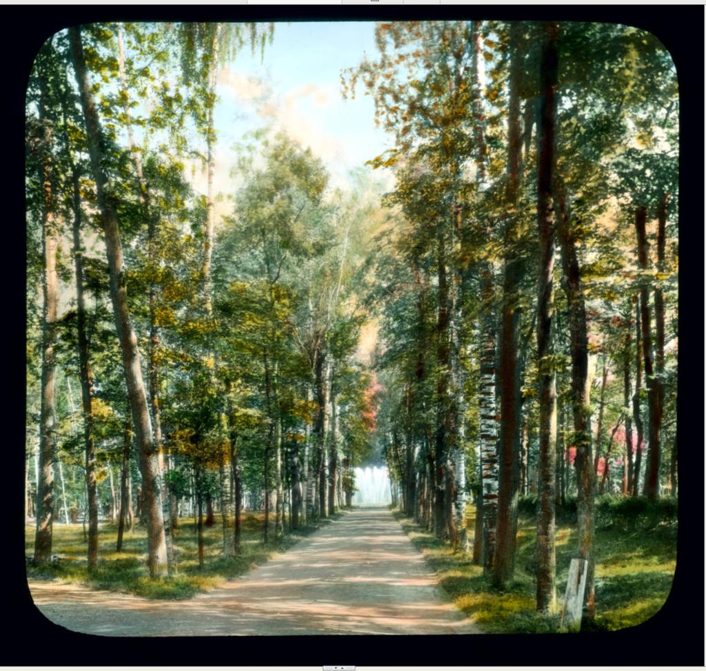Петергоф: прогулка по Нижнему парку